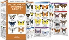 South Carolina Butterflies & Moths (Pocket Naturalist® Guide)