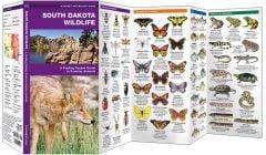 South Dakota Wildlife (Pocket Naturalist® Guide)