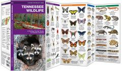 Tennessee Wildlife (Pocket Naturalist® Guide)