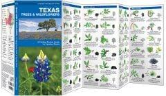 Texas Trees & Wildflowers (Pocket Naturalist® Guide)