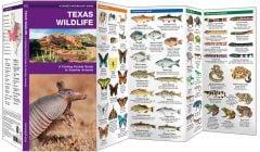 Texas Wildlife (Pocket Naturalist® Guide)