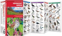 Vermont Birds (Pocket Naturalist® Guide)