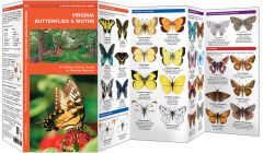 Virginia Butterflies & Moths (Pocket Naturalist® Guide)