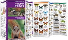 Virginia Wildlife (Pocket Naturalist® Guide)
