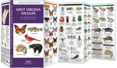 West Virginia Wildlife (Pocket Naturalist® Guide)