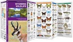 Wyoming Wildlife (Pocket Naturalist® Guide)