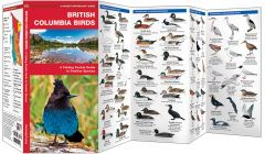 British Columbia Birds, 2nd Edition (Pocket Naturalist® Guide)