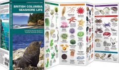 British Columbia Seashore Life (Pocket Naturalist® Guide)