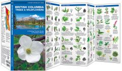 British Columbia Trees & Wildflowers, 2nd Edition (Pocket Naturalist® Guide)