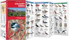 Calgary Birds (Pocket Naturalist® Guide)
