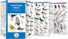 Manitoba Birds (Pocket Naturalist® Guide)