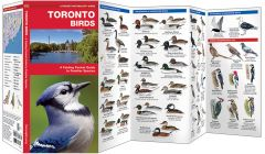 Toronto Birds (Pocket Naturalist® Guide)