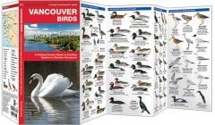 Vancouver Birds (Pocket Naturalist® Guide)