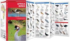 Africa Birds (Pocket Naturalist® Guide)