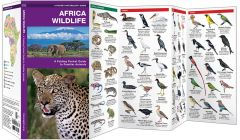 Africa Wildlife (Pocket Naturalist® Guide)