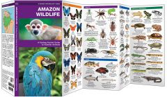 Amazon Wildlife, 2nd Edition (Pocket Naturalist® Guide)