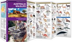 Australia Wildlife (Pocket Naturalist® Guide)