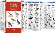 Birds of Britain (Pocket Naturalist® Guide)