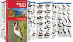 Birds of Ireland (Pocket Naturalist® Guide)