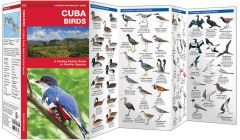 Cuba Birds (Pocket Naturalist® Guide)