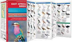 East Africa Birds (Pocket Naturalist® Guide)