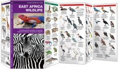 East Africa Wildlife (Pocket Naturalist® Guide)