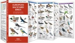 European Backyard Birds (Pocket Naturalist® Guide)
