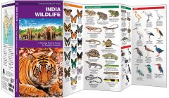 India Wildlife (Pocket Naturalist® Guide)
