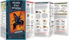 Middle East Wildlife (Duraguide®)