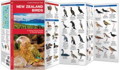 New Zealand Birds (Pocket Naturalist® Guide)