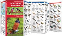 Southeast Asia Birds (Pocket Naturalist® Guide)