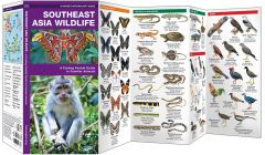 Southeast Asia Wildlife (Pocket Naturalist® Guide)
