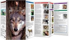 World of Wild Dogs, The (Jeff Corwin's Explorer Series®)