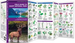 Field Guide to Banff National Park (Pocket Naturalist® Guide)