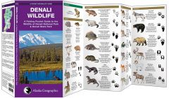 Denali Wildlife (Pocket Naturalist® Guide)