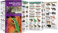 Everglades Wildlife (Pocket Naturalist® Guide)