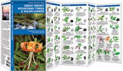 Great Smoky Mountains Trees & Wildflowers (Pocket Naturalist® Guide)