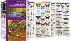Great Smoky Mountains Wildlife (Pocket Naturalist® Guide)