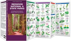 Redwood National & State Parks (Pocket Naturalist® Guide)