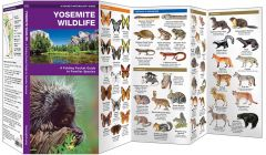 Yosemite Wildlife (Pocket Naturalist® Guide)