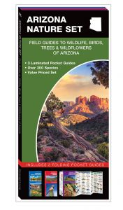 Arizona Nature Set: Field Guides to Wildlife, Birds, Trees & Wildflowers (Pocket Naturalist® Guide Set)