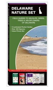 Delaware Nature Set: Field Guides to Wildlife, Birds, Trees & Wildflowers (Pocket Naturalist® Guide Set)