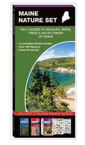 Maine Nature Set: Field Guides to Wildlife, Birds, Trees & Wildflowers (Pocket Naturalist® Guide Set)