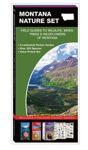Montana Nature Set: Field Guides to Wildlife, Birds, Trees & Wildflowers (Pocket Naturalist® Guide Set)
