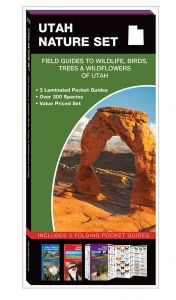 Utah Nature Set: Field Guides to Wildlife, Birds, Trees & Wildflowers (Pocket Naturalist® Guide Set)