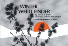 Winter Weed Finder: A Guide to Dry Plants in Winter (Eastern North America)