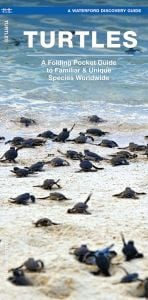 Turtles (Waterford Discovery® Guide)