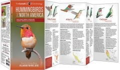 Hummingbirds (All About Birds Pocket Guide®)