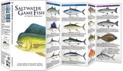 Saltwater Game Fish of North America (Pocket Fish Identification Guide®)