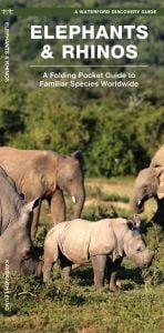 Elephants & Rhinos (Waterford Discovery® Guide)